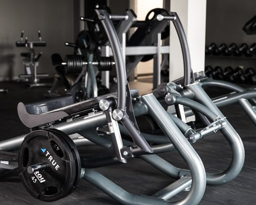 true fitness тренажеры
