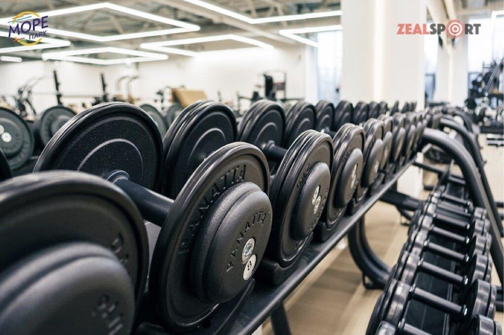 Зона свободных весов фитнес-клуба Море Парк